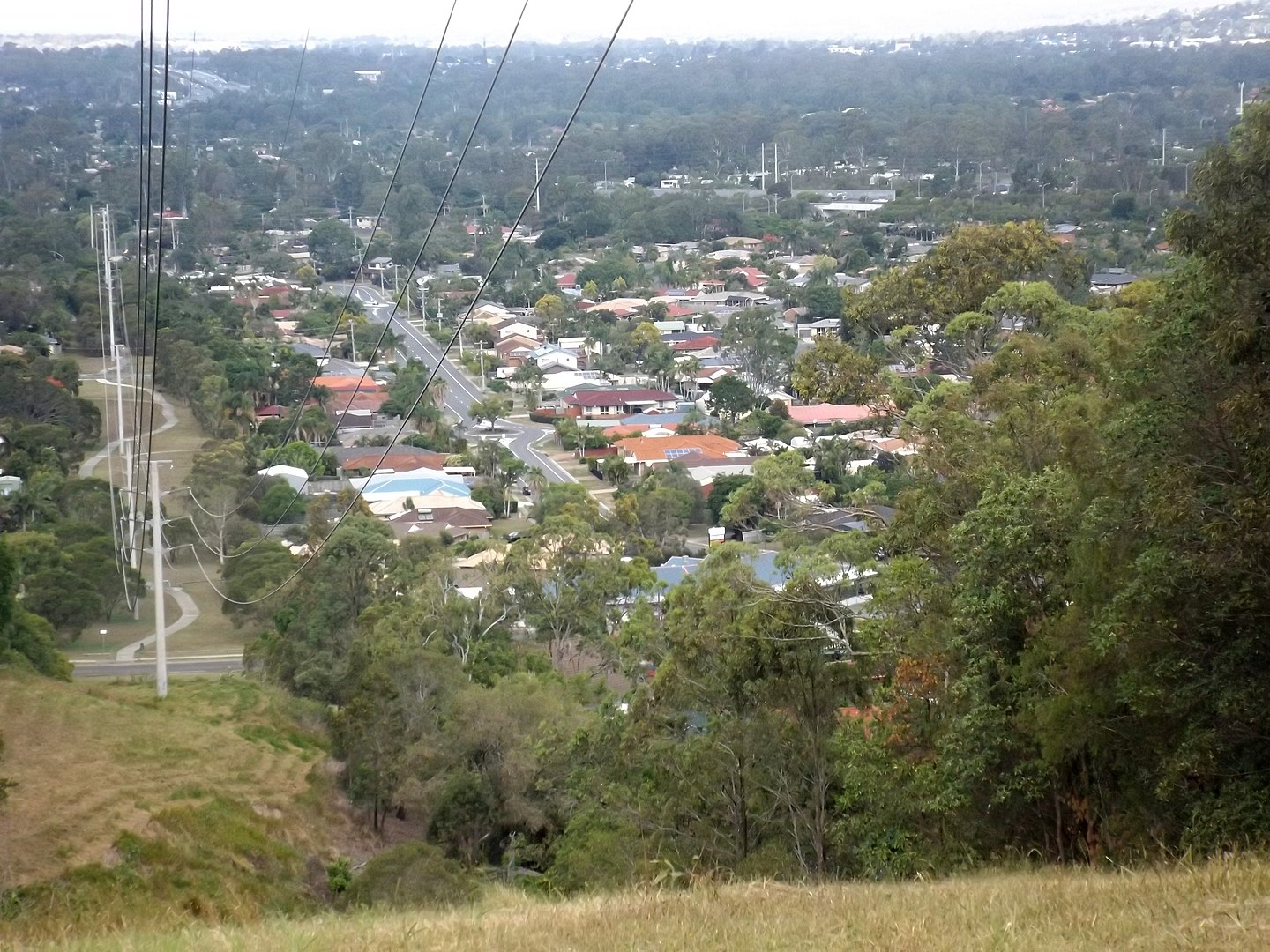 1440px-View_south_from_hill_in_Tanah_Merah,_Queensland