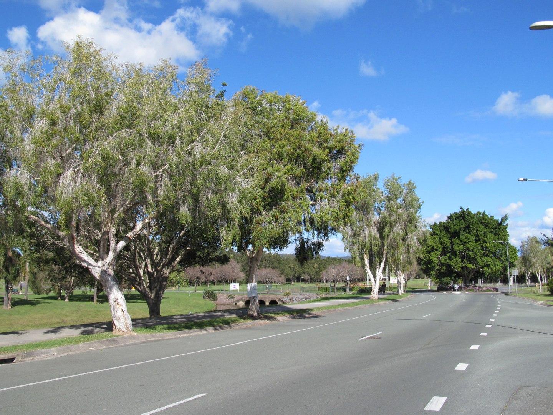 1440px-Windaroo_road_alongside_mem_park
